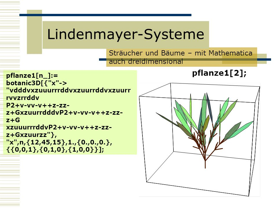 Lindenmayer-Systeme pflanze1[2];